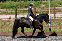 26. RIDDEN M&M LARGE BREEDS (exc. Welsh)